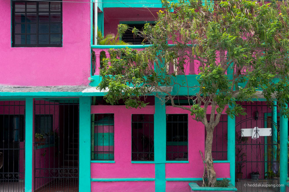The colors of Mexico
