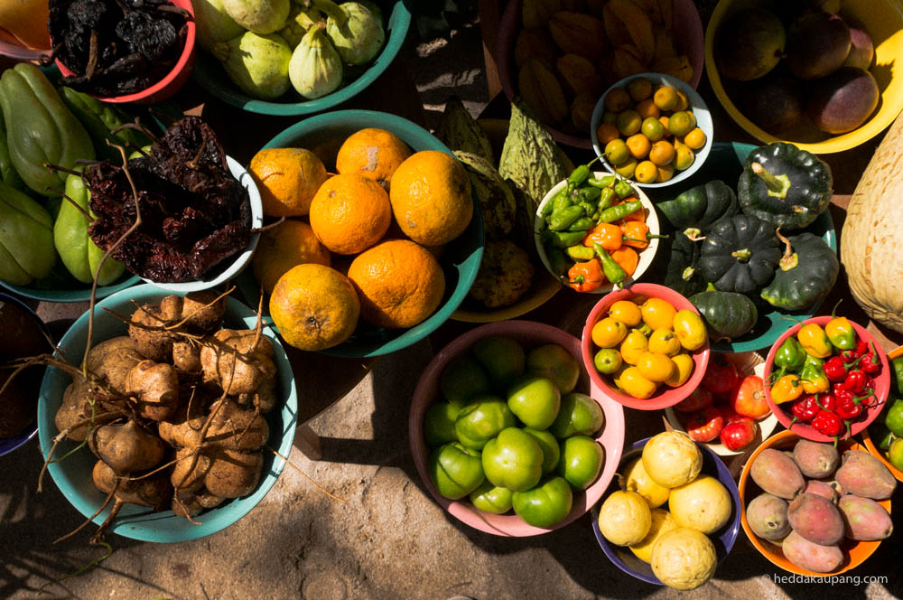 Fruits and vegetables of Noma Mexico
